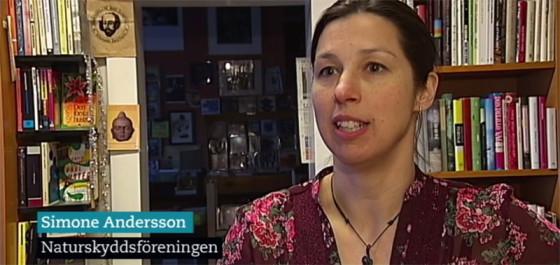 Simone SVT Västerbotten
